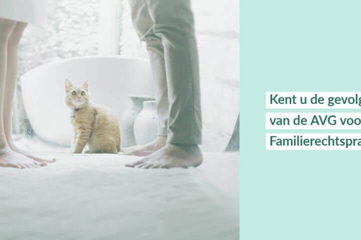Afbeelding bij artikel over de AVG en de familierechtspraktijk